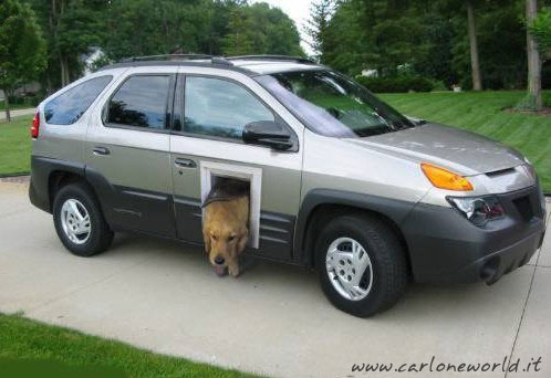 Macchina uscita cane