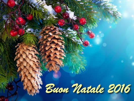 Buon Natale 2016 con albero di Natale addobbato e pigne