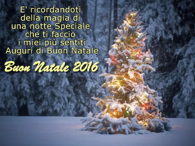 Auguri di Buon Natale 2016 con albero di Natale innevato e bellissima frase di Natale: E' ricordandoti della magia di una notte Speciale che ti faccio i miei piu' sentiti Auguri di Buon Natale.