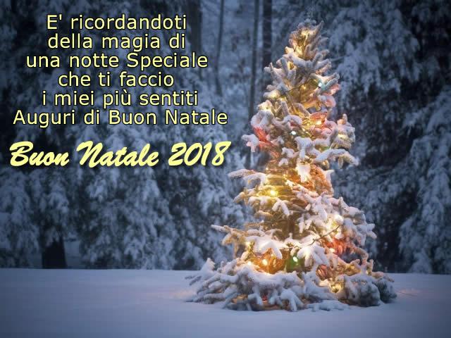 Auguri di Buon Natale 2018 con albero di Natale innevato e bellissima frase di Natale: E' ricordandoti della magia di una notte Speciale che ti faccio i miei piu' sentiti Auguri di Buon Natale.