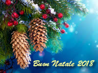Auguri Di Natale In Albanese.Buon Natale In Albanese