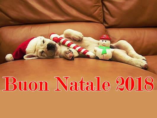 Immagine di Natale: Immagine Natale 2018 cagnolino