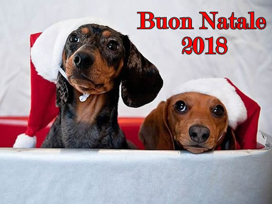 Immagine di Natale: Natale 2018