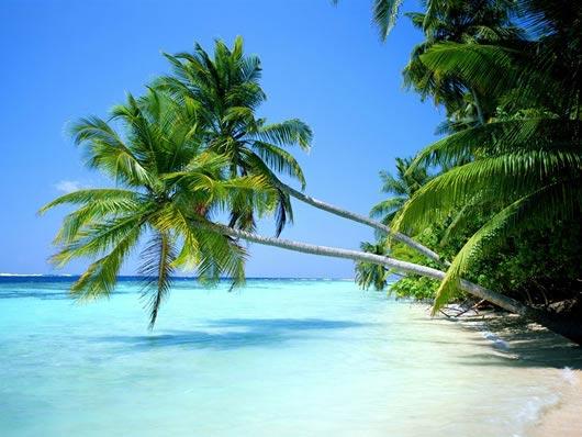 Foto Spiaggia Bellissima