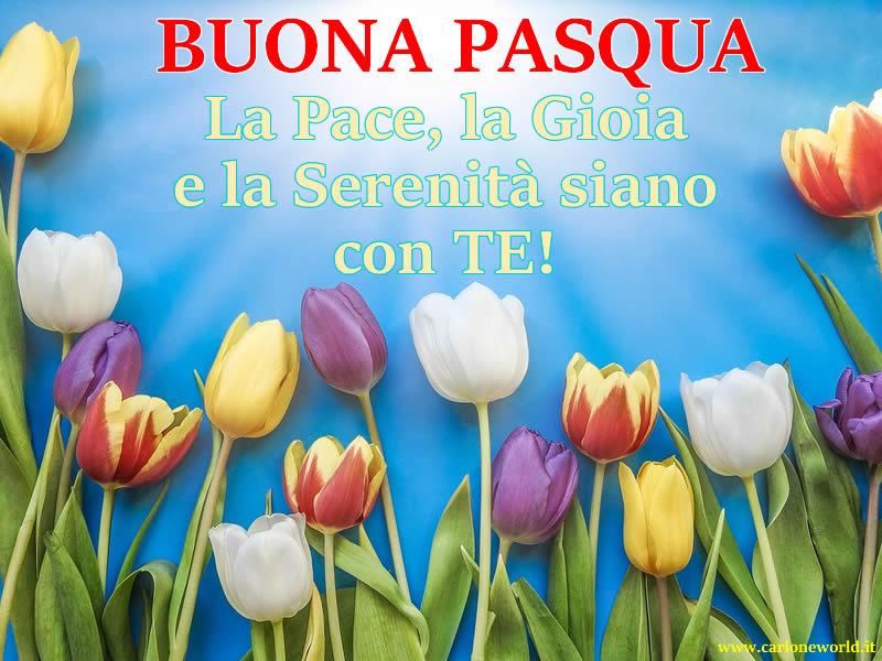Auguri Pasqua da condividere