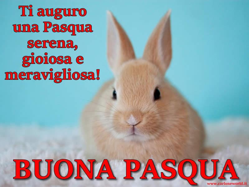 bella immagine Auguri Pasqua con frase di Auguri